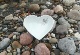 Stor hjerte NA i vand